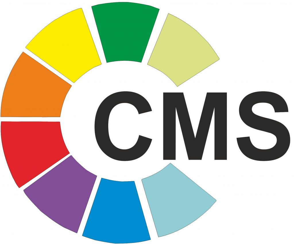 Real Worth of Accessing Open Source CMS for Your Business Site